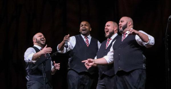 Men's Quartet - Signature MW 2019