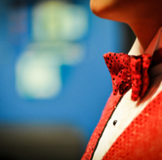 SINGER - bow tie